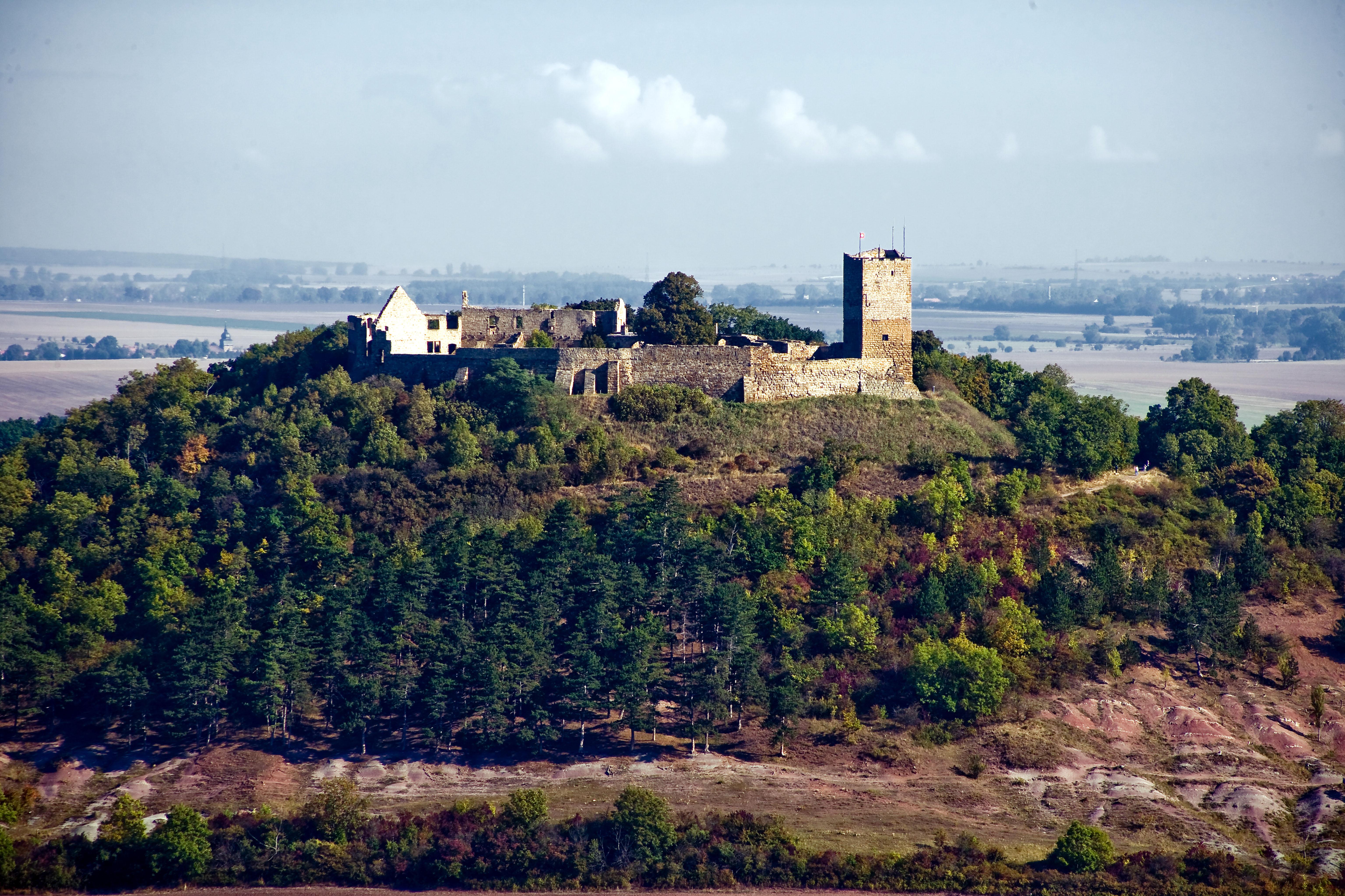 Mittelalterliche Burgruine auf einem bewaldeten Berg, dahinter Blick ins Land.
