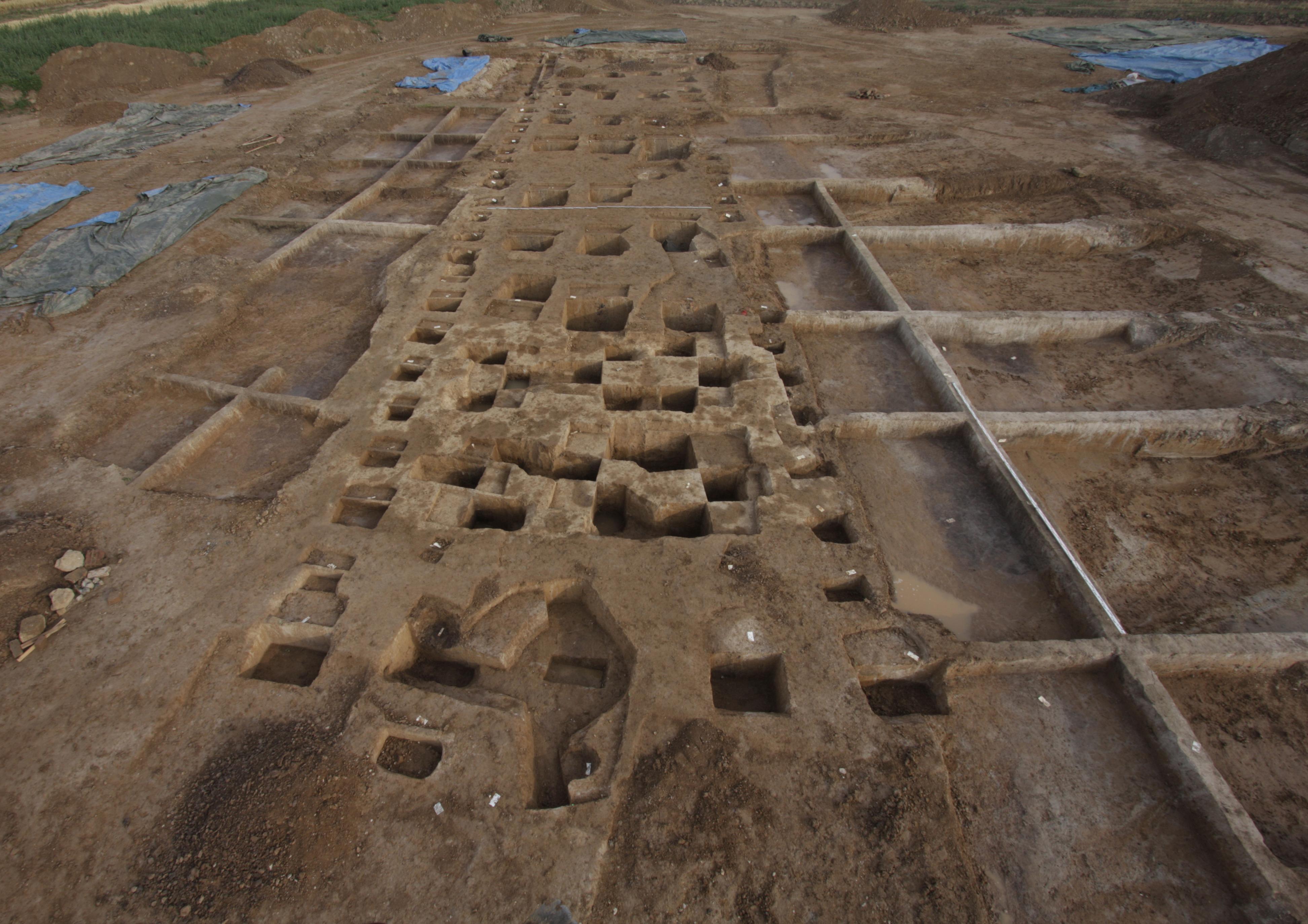 Blick auf weite Ausgrabungsfläche, lang schmaler Hausgrundriss zeichnet sich ab