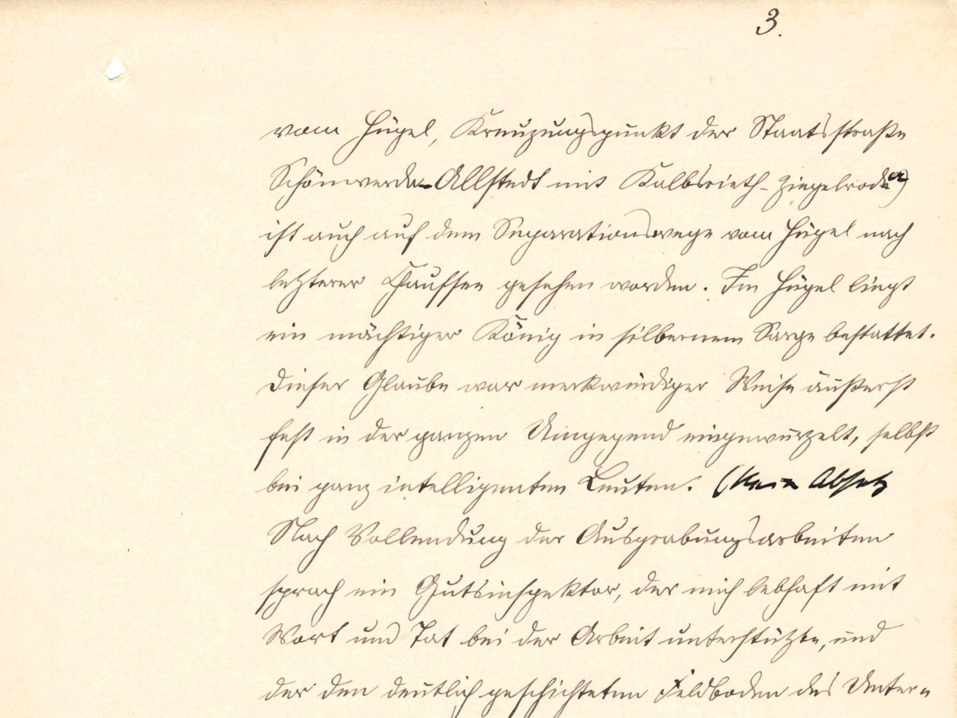 Manuskriptseite in altdeutscher Handschrift auf vergilbtem Papier