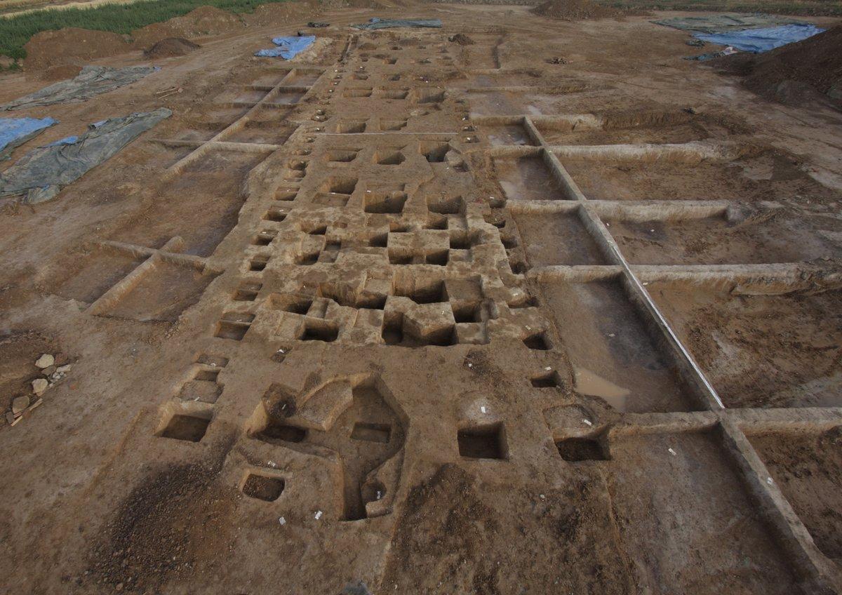 Blick auf eine Ausgrabungsfläche, ein lang schmaler Hausgrundriss zeichnet sich durch ausgegrabene Pfostenlöcher vom braunen Erduntergrund ab